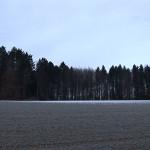 walpurgis_hd22
